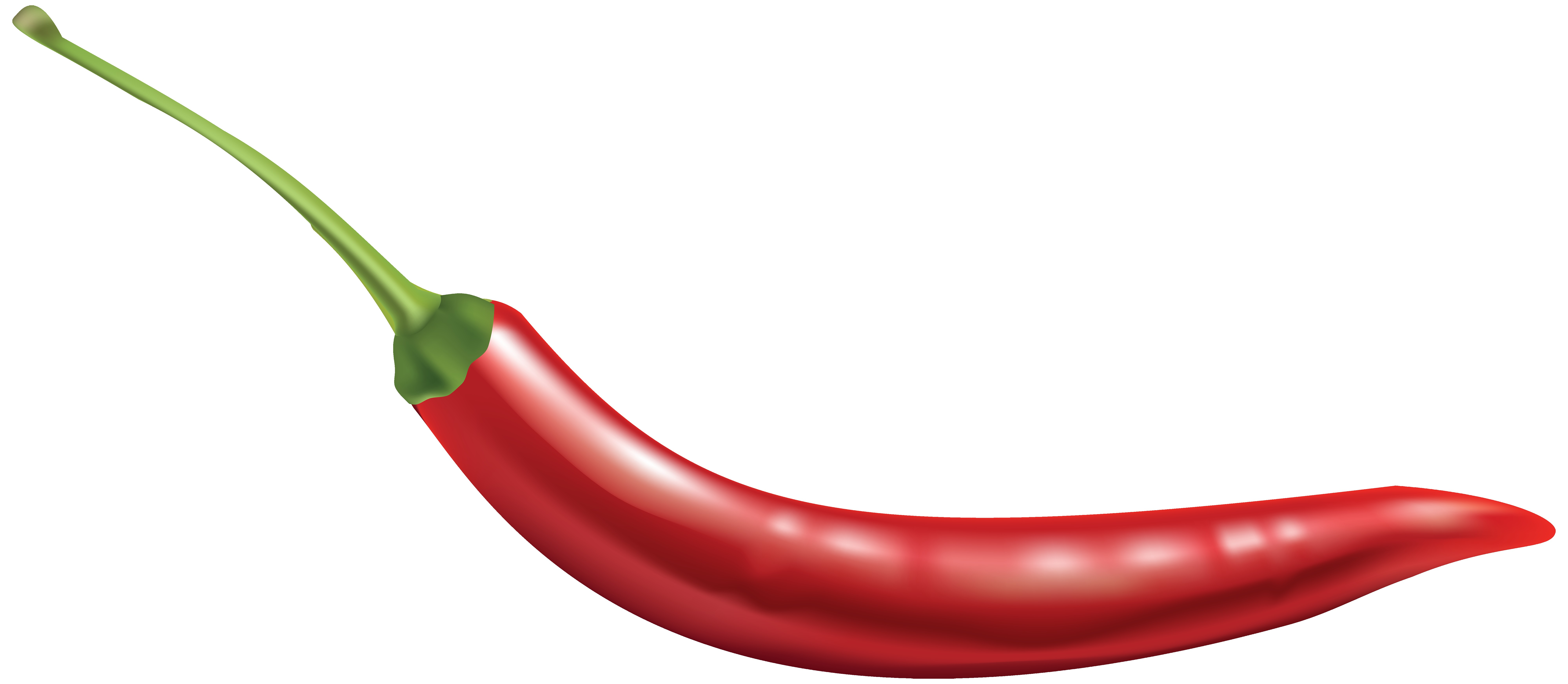 8000x3491 Color Bell Peppers With Onion Royalty Free Vector Clip Art Image