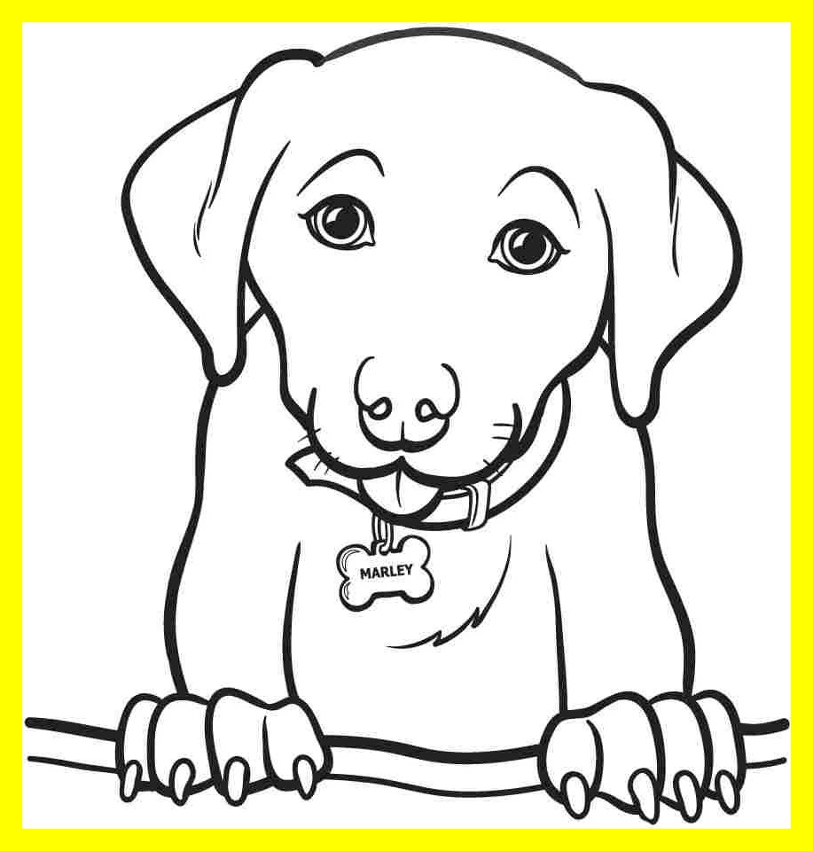 917x960 Inspiring Dog Color Coloring Page Of A Rallytv Org Cute Puppy