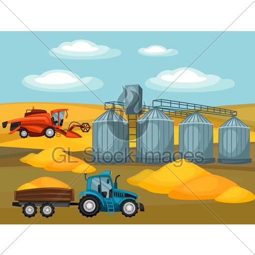 500x500 Harvesting Grain. Combine Harvester, Tractor And Granary . Gl