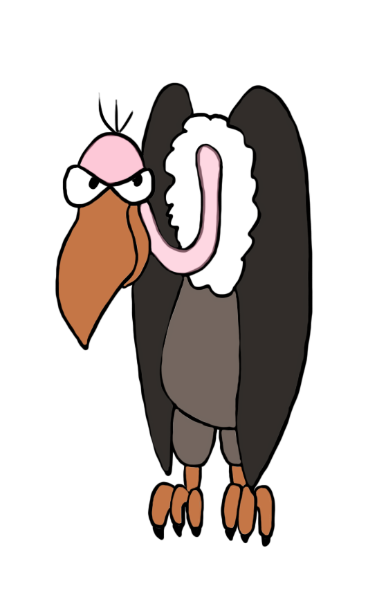 558x886 Vulture Drawing In Color Patterns Vulture