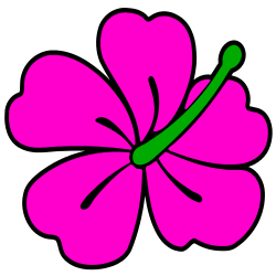 250x250 Free Borders And Clip Art Hibiscus Themed Clip Art And Borders