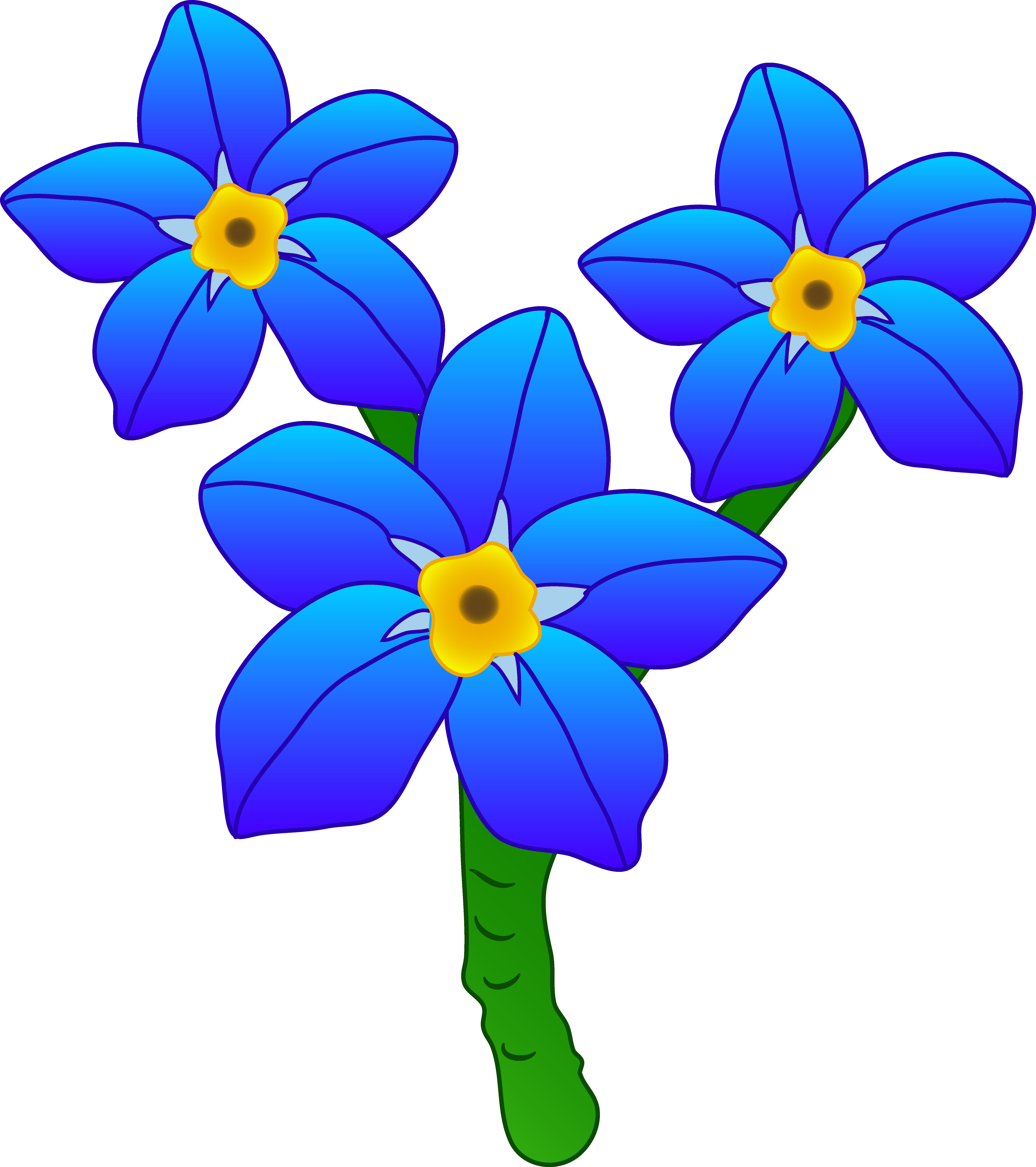 5913x6662 Valuable Flower Cartoon Pictures Clip Art Three Forget Me Not