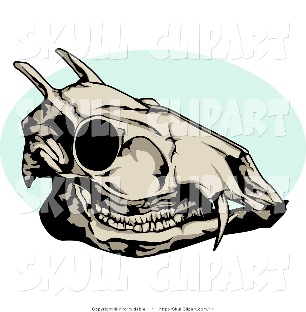 1024x1044 Vector Clip Art Of A Dead Deer Skull With A Blue Circle By R