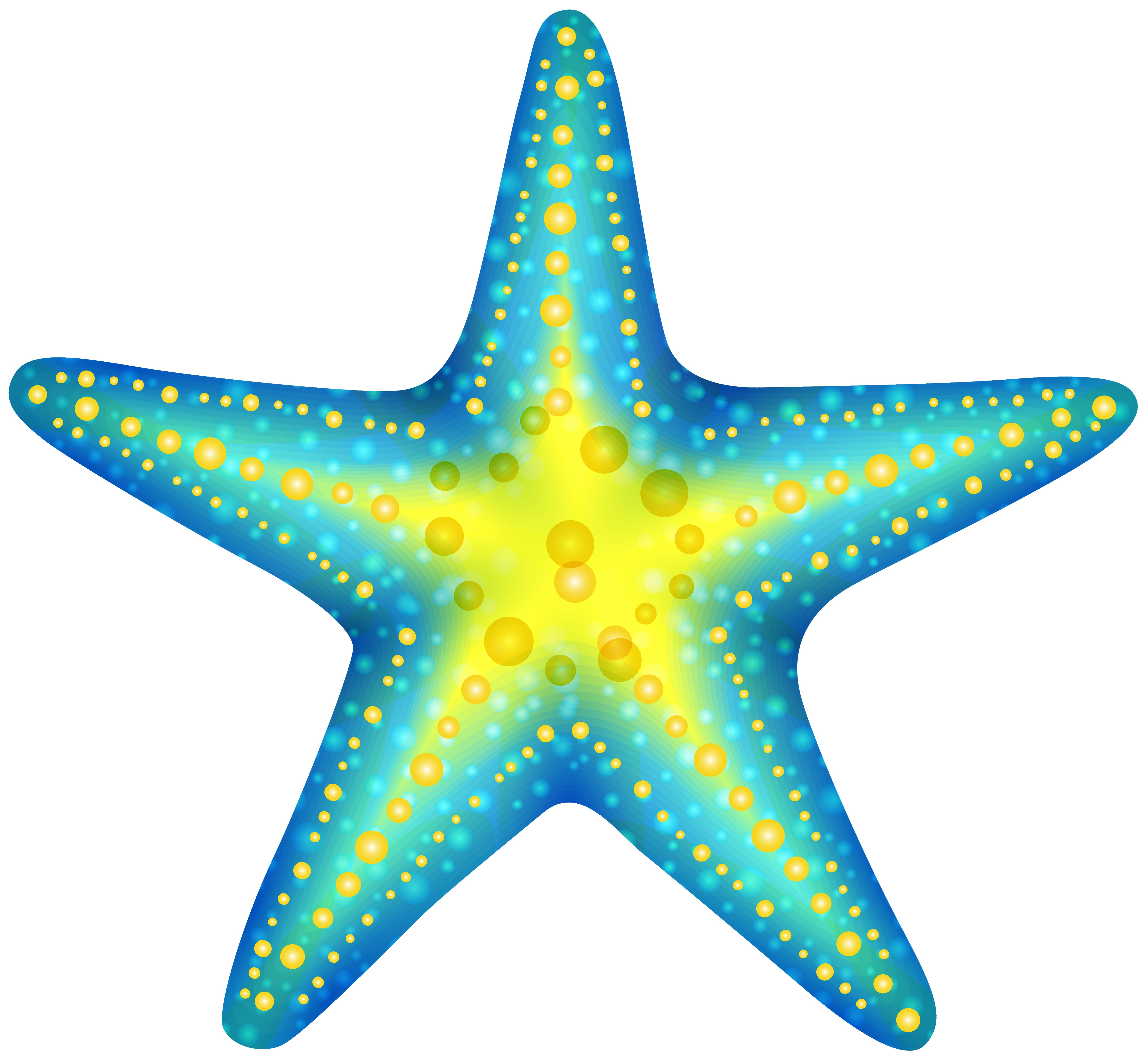 6000x5530 Starfish Transparent Png Clip Art Image Gallery Yopriceville