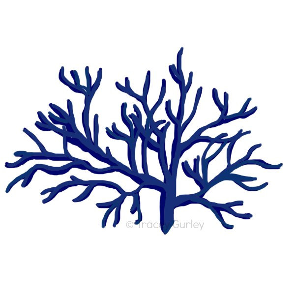 Coral Clipart
