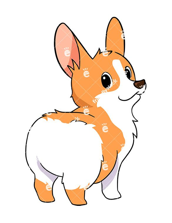 585x755 Cute Corgi Dog Showing Off Its Cute Butt Vector Cartoon Clipart