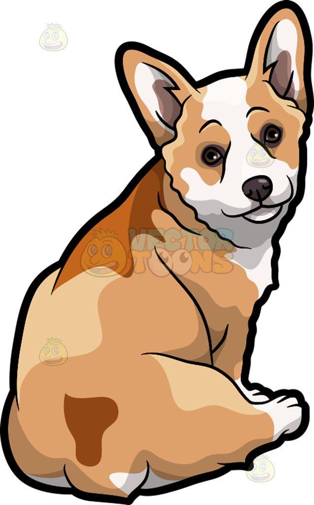 638x1024 A Lovely Corgi Pet Dog Cartoon Clipart Vector Toons