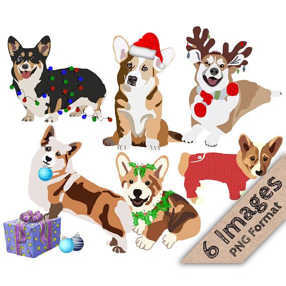 570x570 Christmas Corgis