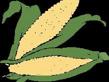 220x165 Sweet Corn Clipart Corn Clip Art