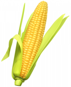 245x300 Sweet Corn Clipart Pin Courtney Patterson On Fruit And Vegetables