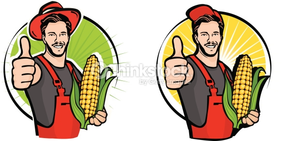 587x291 Corn Farm Clipart, Explore Pictures