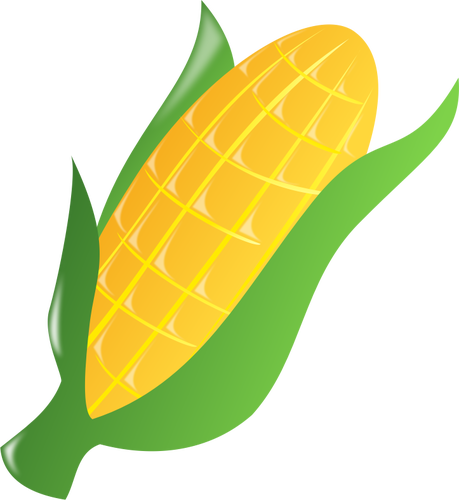 459x500 Corn On The Cob 2 Public Domain Vectors