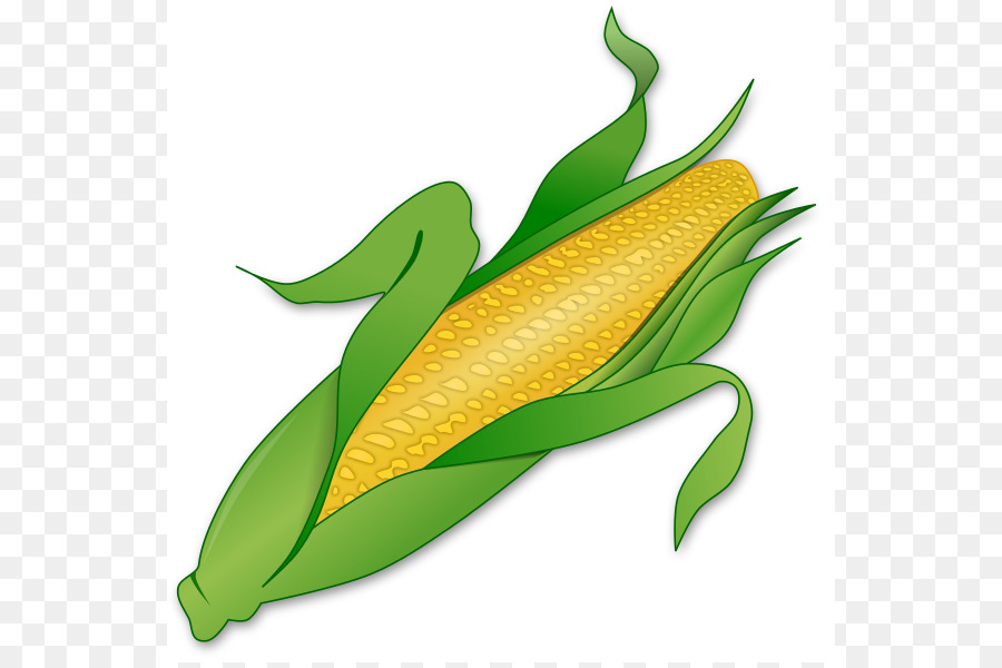 900x600 Corn On The Cob Candy Corn Maize Sweet Corn Clip Art