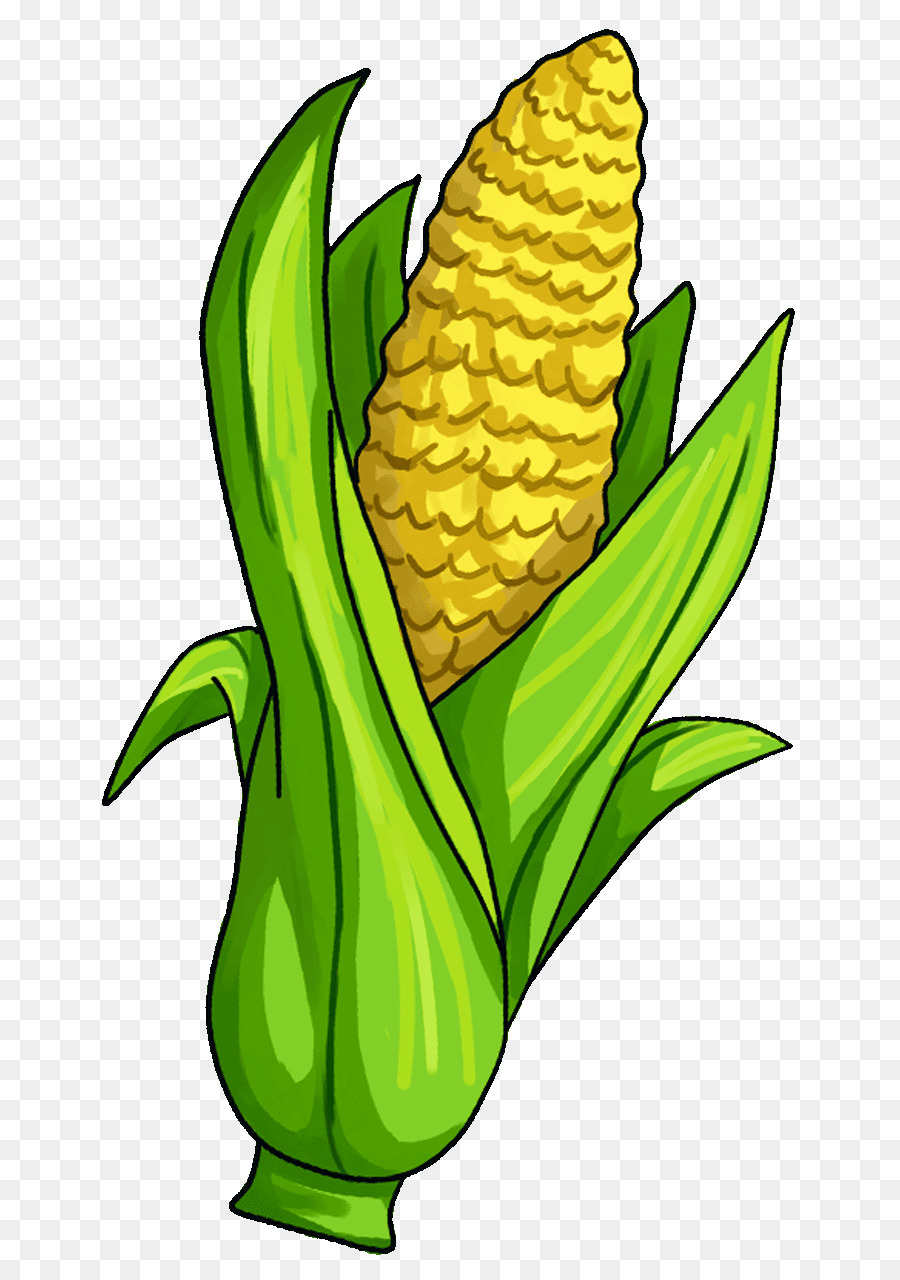 900x1280 Corn On The Cob Candy Corn Maize Vegetable Clip Art