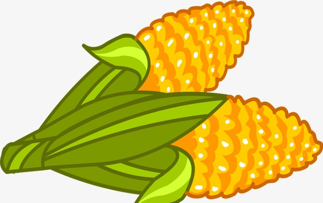 650x409 Two Golden Corn Anime Version, Golden, Corn, Two Clipart Png Image