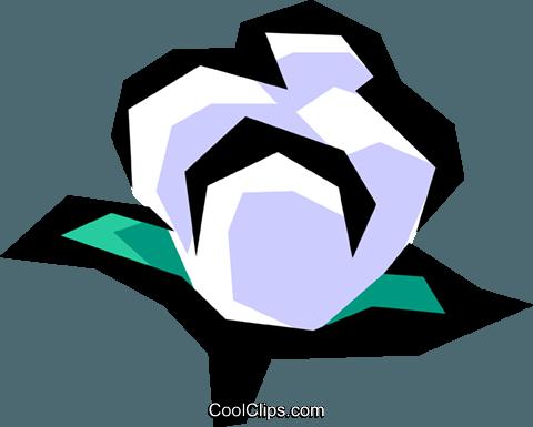 480x385 Cotton Royalty Free Vector Clip Art Illustration Indu0556