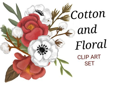 570x356 Hand Drawn Cotton And Floral Clipart, Cotton Clip Art, Red Floral