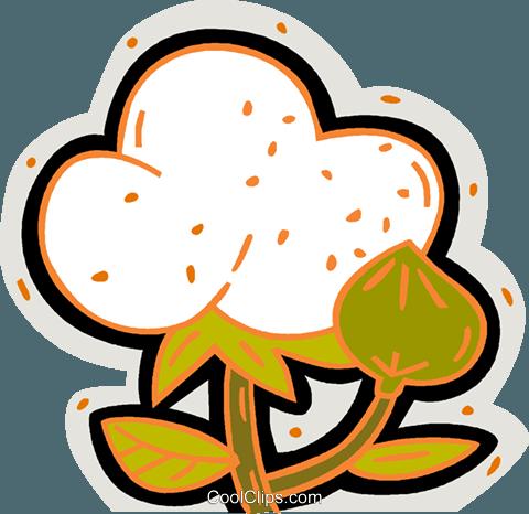 480x466 Cotton Plant Royalty Free Vector Clip Art Illustration Vc007570