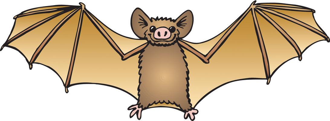 1092x400 Animl Clipart Bat