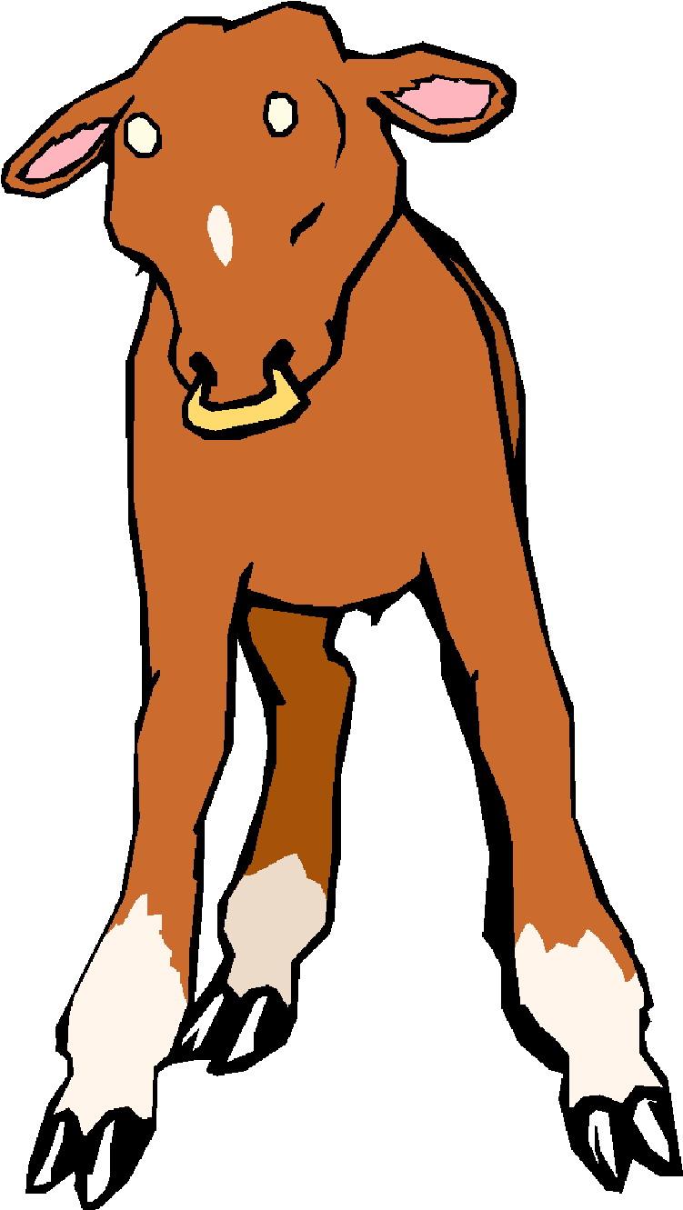 751x1331 Clip Art Farm Cows