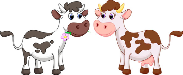 585x240 Funny Cow Cartoon