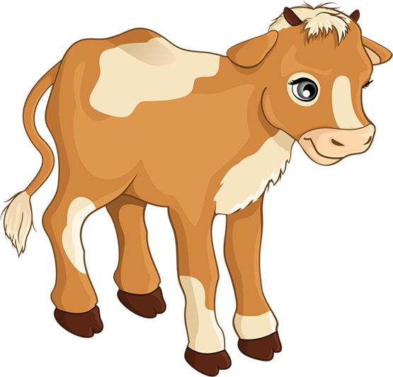 555x532 Tubes Vaches Cow, Clip Art And Pebble Art
