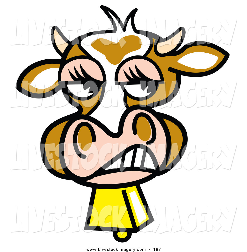 1024x1044 Royalty Free Cow Stock Livestock Designs
