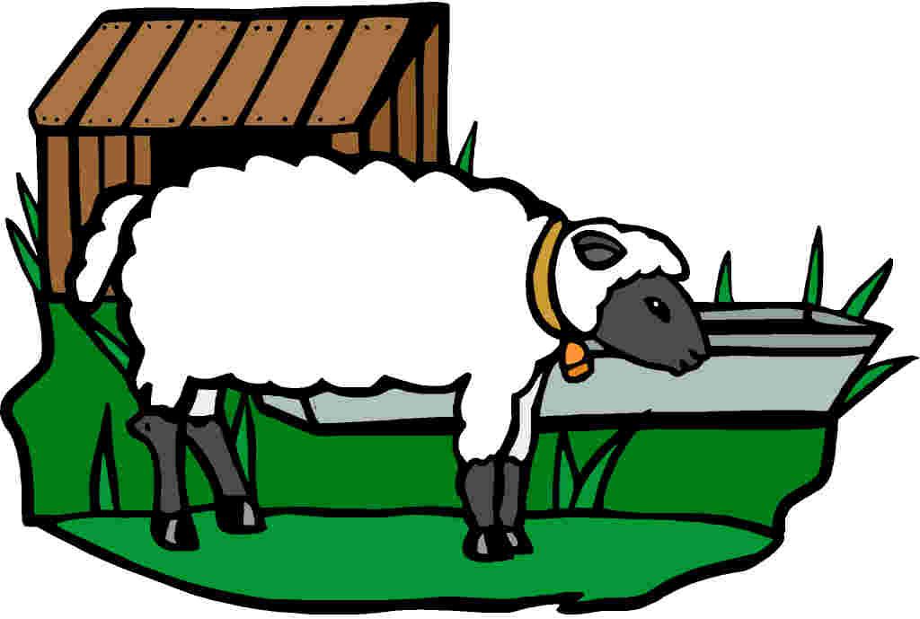 1024x689 Sheep Clip Art Farm