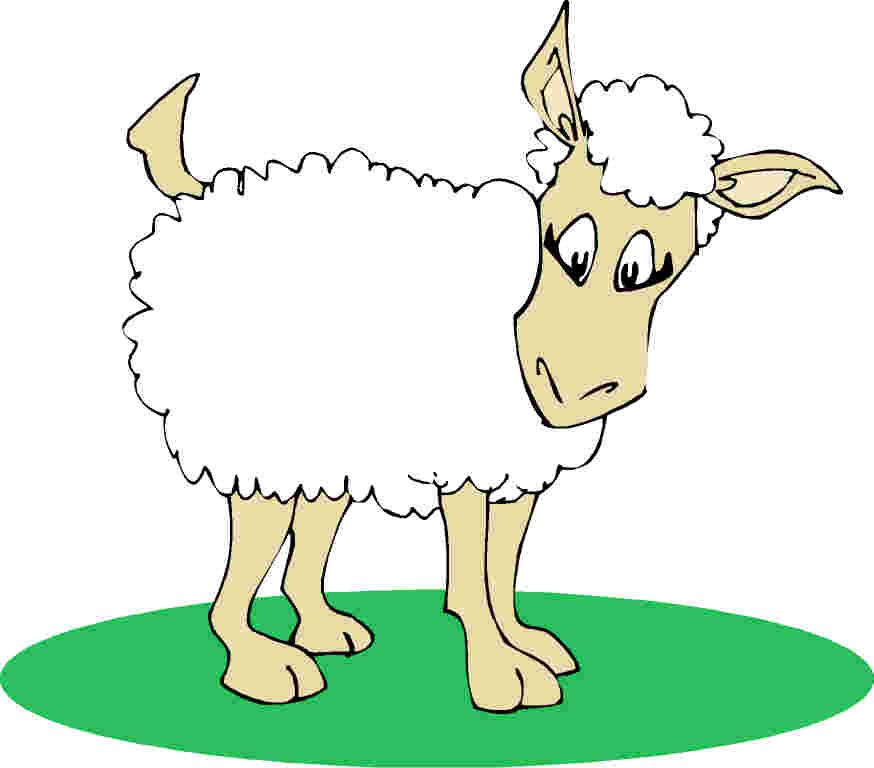 874x768 Clipart Image Of Sheep