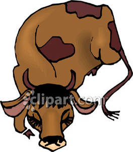 264x300 Sleeping Cow Clipart Amp Sleeping Cow Clip Art Images