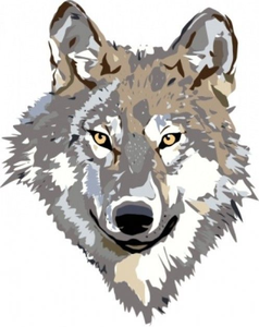 238x300 Free Clipart Coyote Free Images