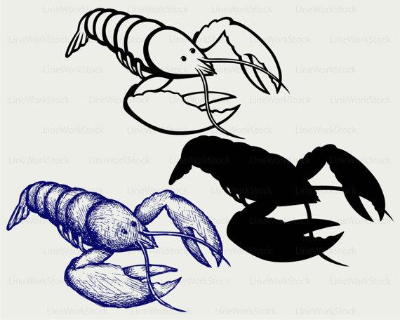 570x456 Crayfish Svgcrayfish Clipartcrayfish Svgcrayfish Silhouette