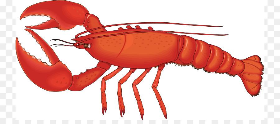900x400 Lobster Free Content Clip Art