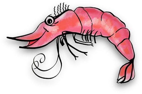 500x332 Shrimp Clipart Free Free Shrimp Cliparts Download Free Clip Art