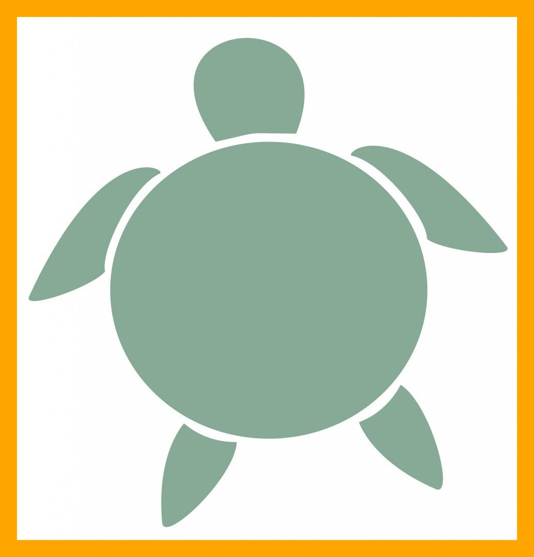 1045x1090 Appealing Turtle Outline Clip Art On For Drawing Crayola Popular