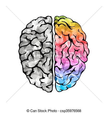 450x470 Human Brain Clipart Creative Concept Of The Human Brain Left