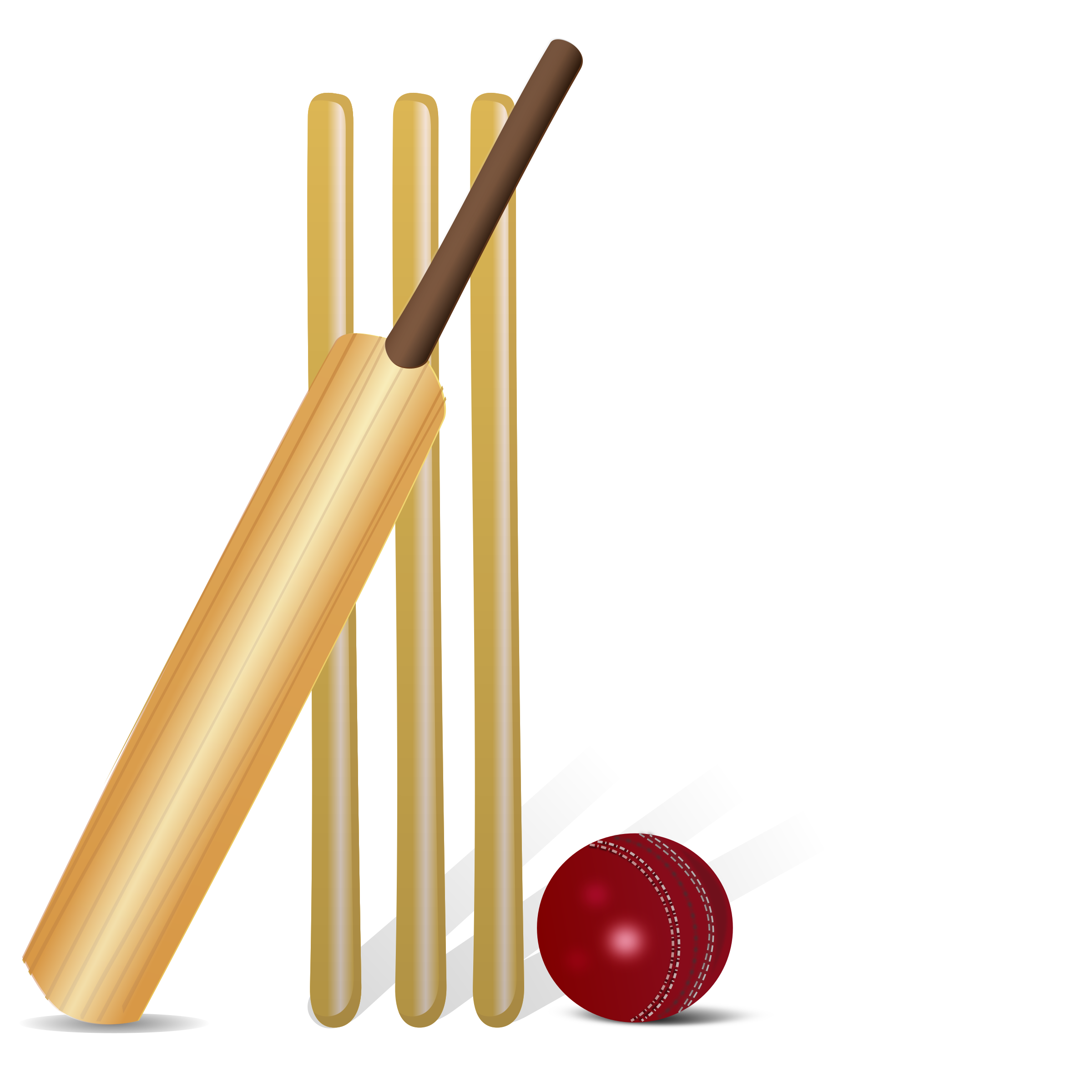 The Best Free Cricket Clipart Images  Download From 139