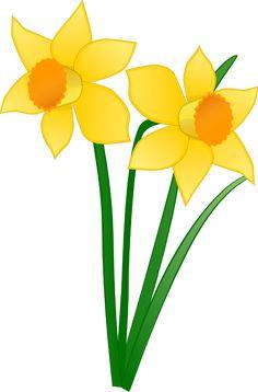 236x358 Daffodil Graphics Daffodils Free Clip Art