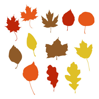 350x350 12 Fall Leaf Silhouettes Clipart, Autumn Leaves Clip Art, Leaf Svg