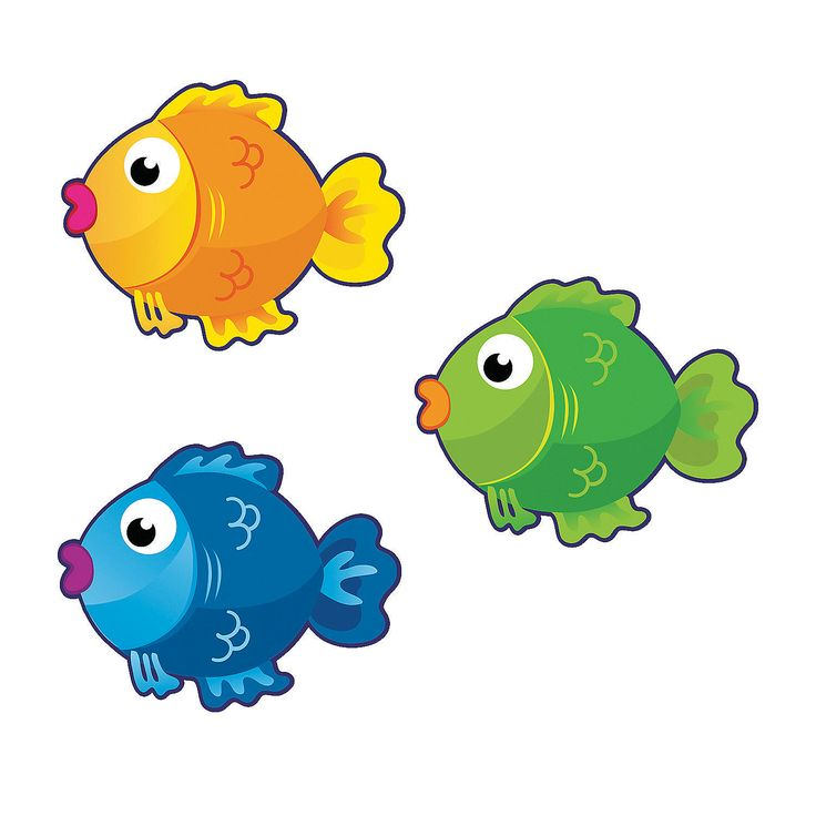 736x736 Top 82 School Of Fish Clip Art