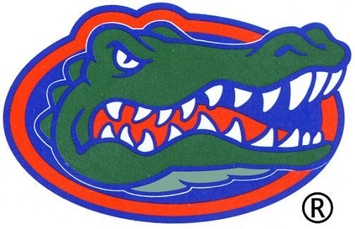 504x325 Florida Gators Clipart