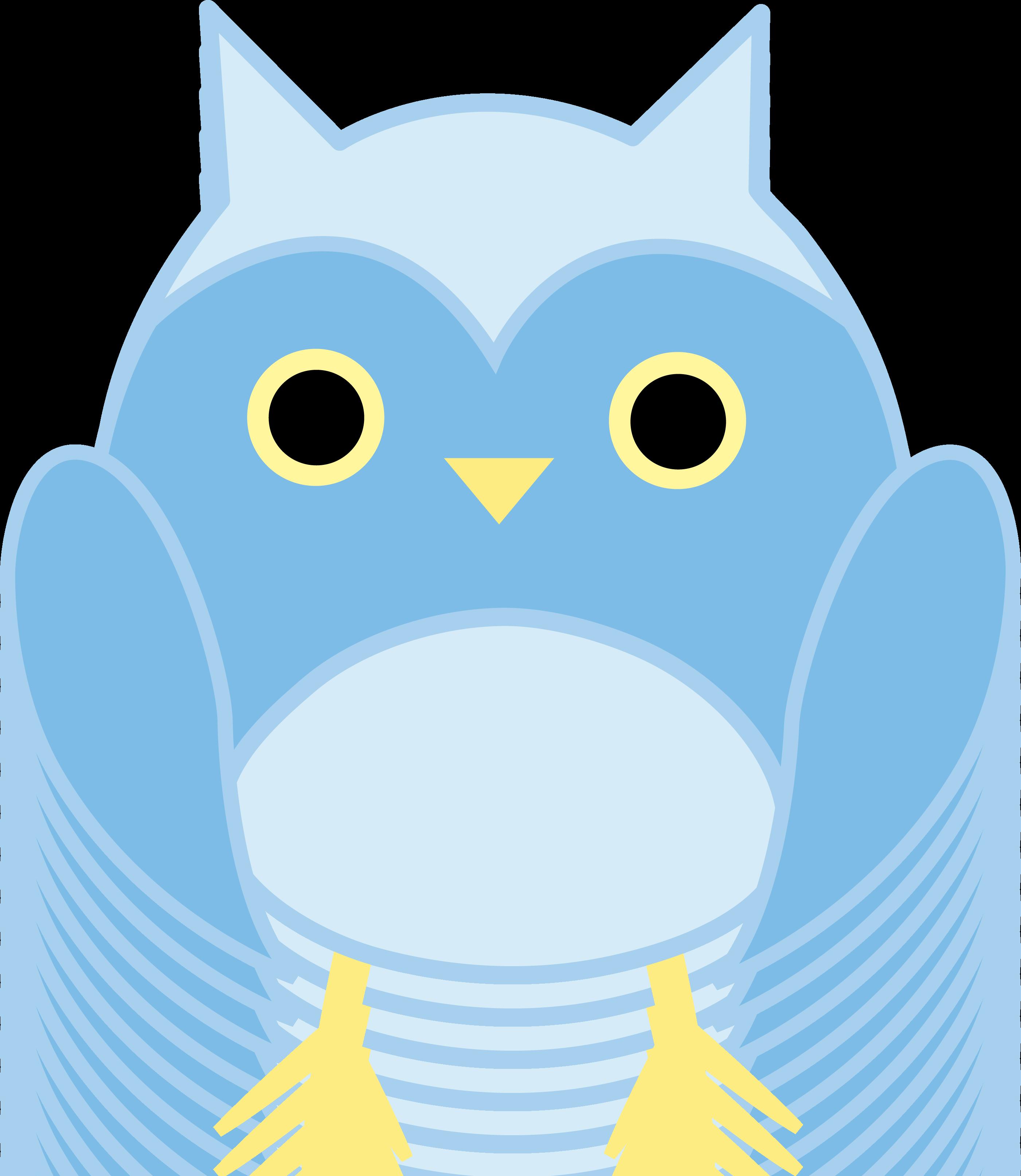 2802x3228 Cute Blue Owl