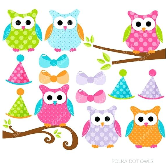 570x570 Owl Pictures Clip Art Themusicfoundry Future