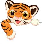 140x150 Tiger Face Clip Art Clipart Panda