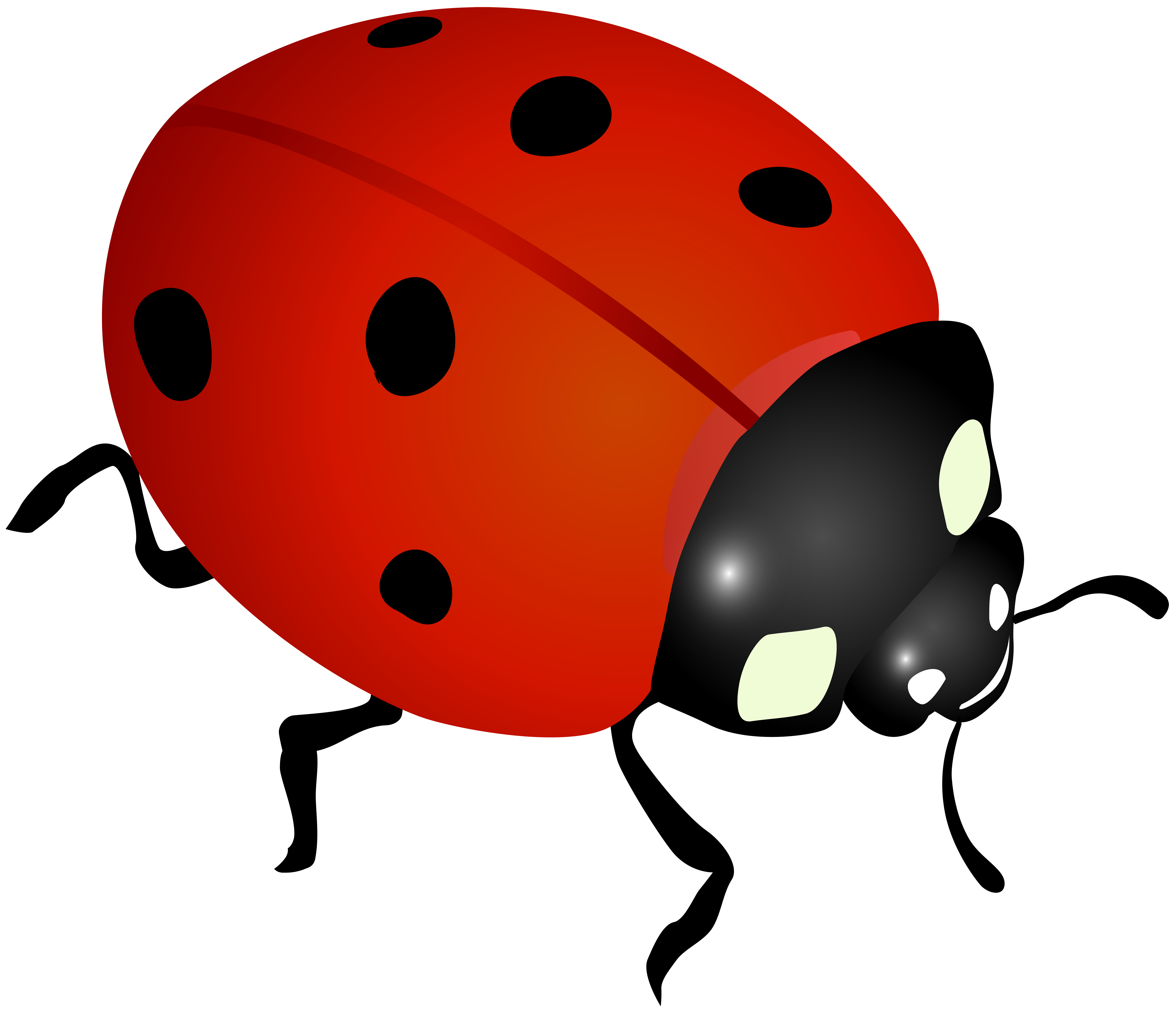 8000x6865 Collection Of Ladybug Clipart Transparent High Quality, Free