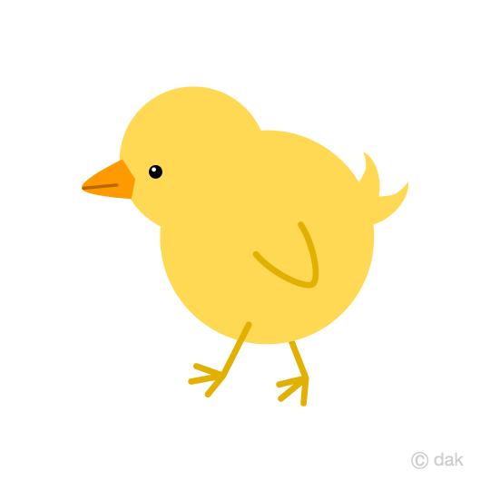 540x540 Free Cute Chick Cartoon Amp Clipart Amp Graphics [Ii]