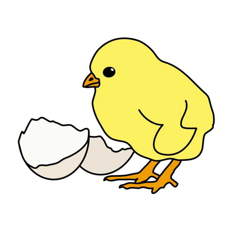 768x768 Baby Chick Clip Art Images Cute Baby Chicken Clipart Clipart Panda