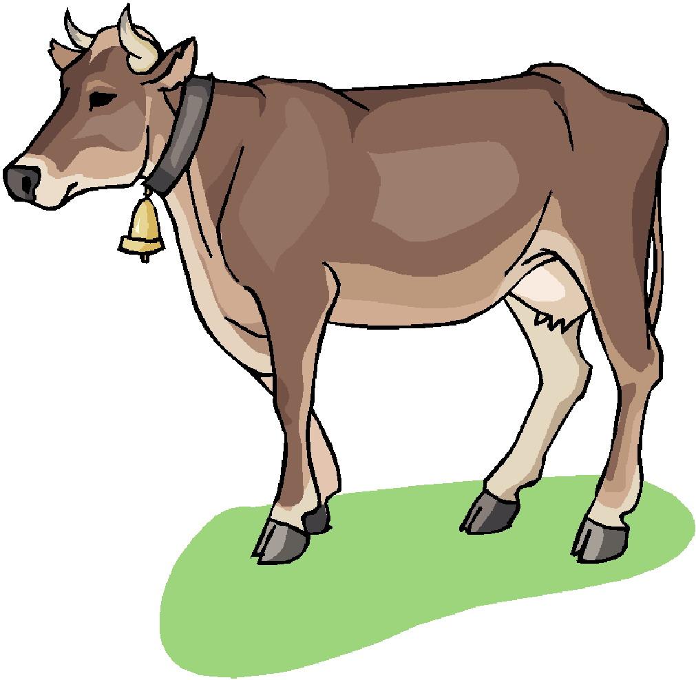 1011x988 Cow Clip Art Free Cartoon Clipart Panda