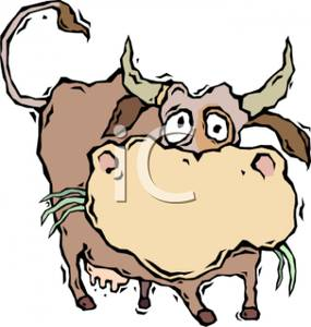 285x300 A Colorful Cartoon Of A Cute Cow Chewing Cud