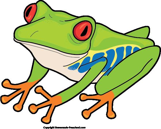 559x449 Green Eyes Clipart Frog Eye